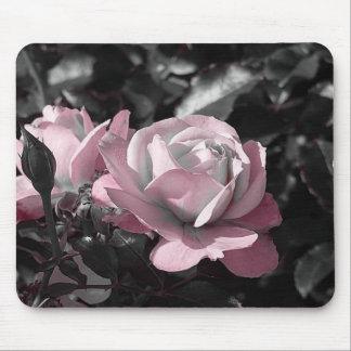 Rosaleda rosada mouse pads