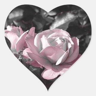 Rosaleda rosada pegatina en forma de corazón