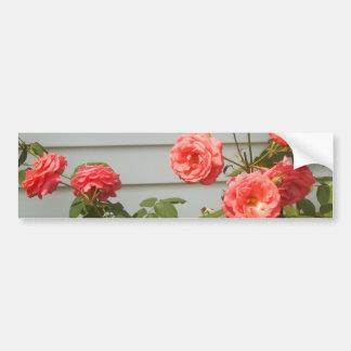 Rosaleda rosada pegatina para auto