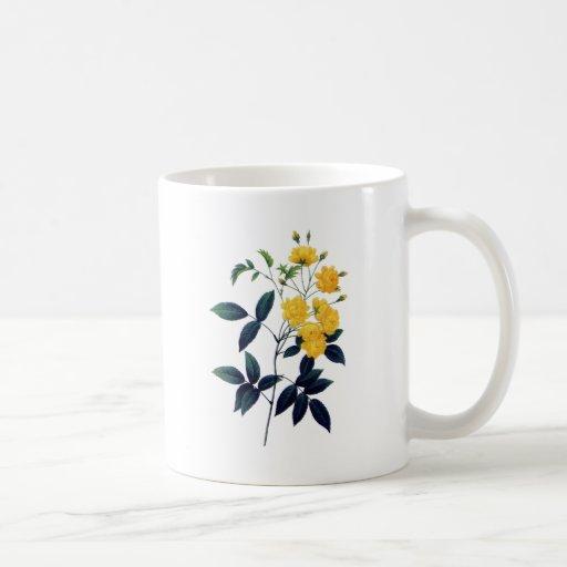 Rosas amarillos de Pedro José Redoute Tazas De Café