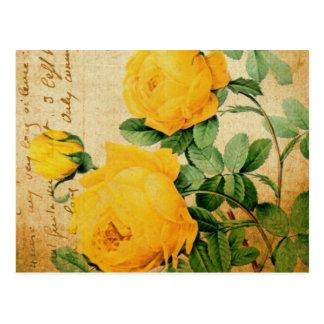 Rosas amarillos del vintage postal