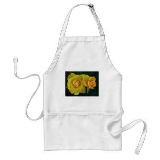 Rosas amarillos que flotan en espacio delantal