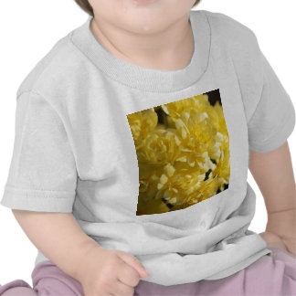 Rosas amarillos y significado camisetas
