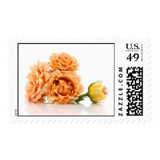 Rosas anaranjados timbres postales