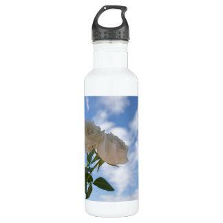 Rosas blancos contra el cielo azul