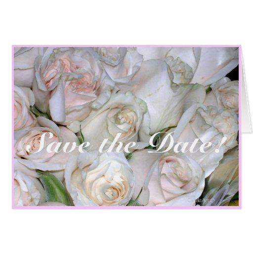 Rosas blancos de ruborización tarjeta pequeña