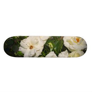 Rosas blancos en la floración - fotografía de la f tablas de patinar