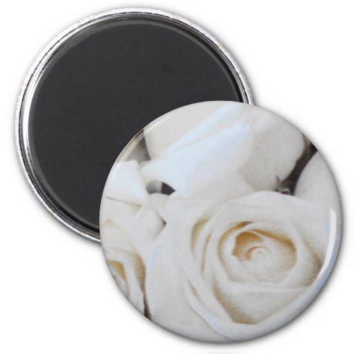 Rosas blancos imán redondo 5 cm