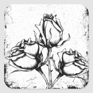 Rosas blancos y negros del Grunge Pegatina Cuadrada