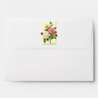Rosas botánicos del vintage blanco rosado