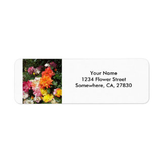 Rosas coloridos etiqueta de remitente