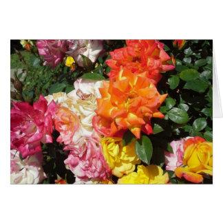 Rosas coloridos tarjeta de felicitación