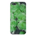 Rosas colorized verde del manojo iPhone 5 coberturas
