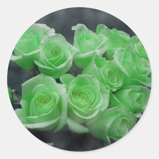Rosas colorized verde del manojo etiquetas redondas