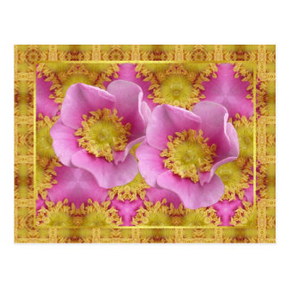 Rosas de arbusto rosados tarjeta postal