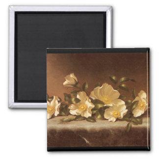 Rosas de Cheroke en el paño gris claro Imanes De Nevera