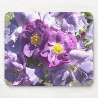 Rosas de color de malva alfombrillas de ratón