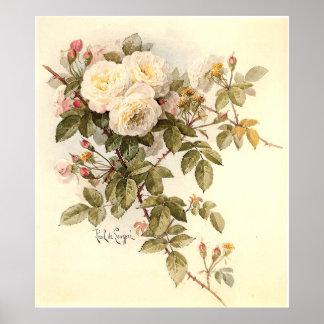 Rosas de Guinevere de Paul De Longpré Póster