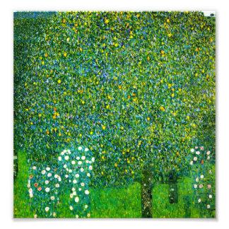 Rosas de Gustavo Klimt debajo del peral Fotografia