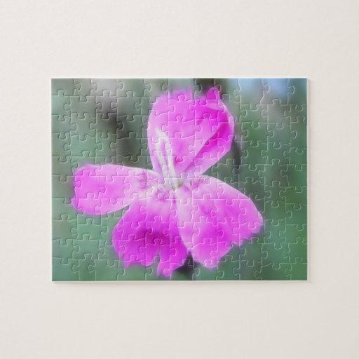 Rosas de jardín fragantes puzzles con fotos