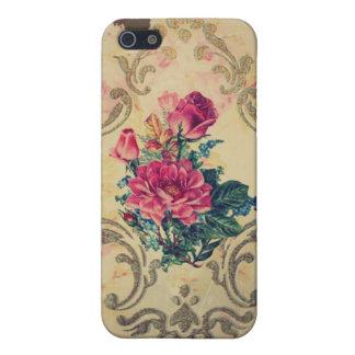 Rosas de la cabaña iPhone 5 carcasas