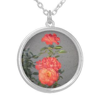 Rosas de la catedral del albaricoque pendiente personalizado