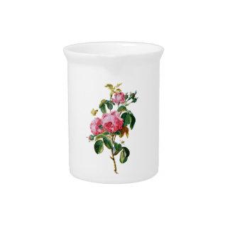 Rosas de la col extraídos de la naturaleza jarrones