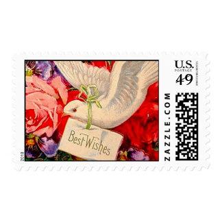 Rosas de la paloma del Victorian del vintage de re