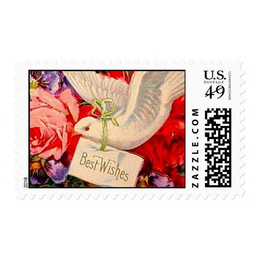 Rosas de la paloma del Victorian del vintage de Envio