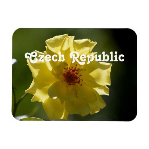 Rosas de la República Checa Imán
