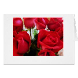 Rosas de la tarjeta del día de San Valentín