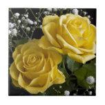 Rosas de Pascua Tejas