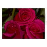 rosas de tres felicitacion