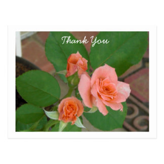Rosas de Tyler Postal