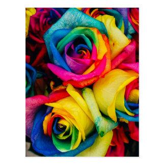 Rosas del arco iris tarjetas postales