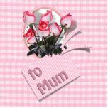 Rosas del día de madre para la momia en rosa a cua esculturas fotográficas