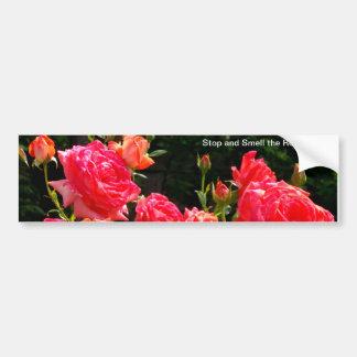 Rosas del melocotón pegatina para auto