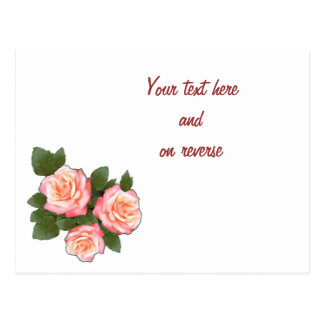 Rosas del melocotón que casan la tarjeta en blanco tarjeta postal