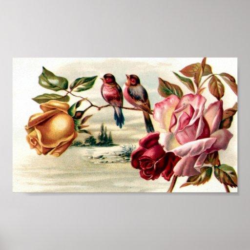 Rosas del pájaro del vintage de la cartera póster