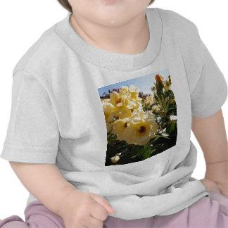 Rosas del punto del oro camisetas
