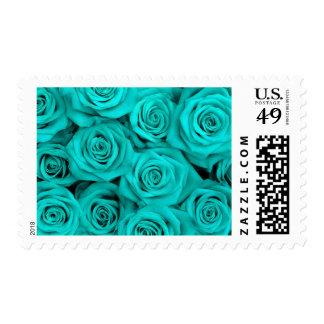Rosas del Spectacular de la turquesa Sello