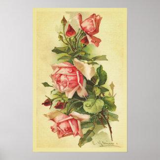 Rosas del vintage con el poster de los descensos póster