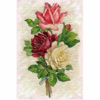 Rosas del vintage pin fotoescultura