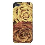 Rosas del vintage iPhone 5 coberturas