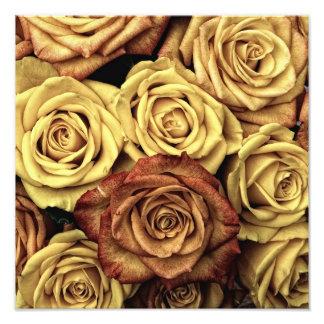 Rosas del vintage cojinete