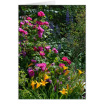 Rosas, Delphiniums y Daylilies. Felicitacion