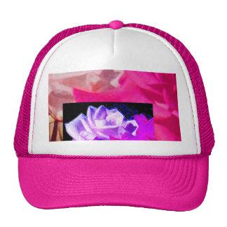 Rosas dobles en púrpura y rosa gorra