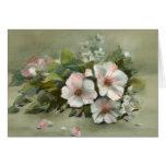 Rosas elegantes lamentables del estilo felicitación