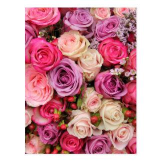 Rosas en colores pastel mezclados por postales