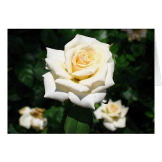 Rosas en el reino mágico tarjeta pequeña